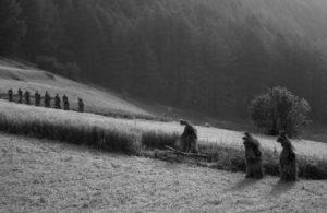 Salige Foto Ursula Fuchs-Hofer - Web